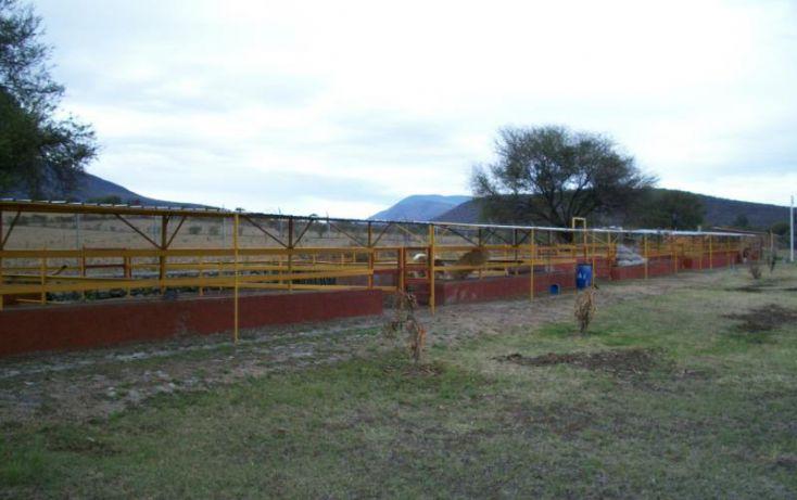 Foto de rancho en venta en camino a la cañada 214, los cedros, ixtlahuacán de los membrillos, jalisco, 1905526 no 40