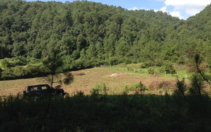 Foto de terreno habitacional en venta en  , cerro gordo, valle de bravo, méxico, 829619 No. 05