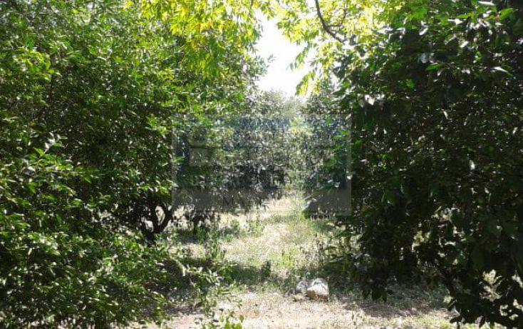 Foto de rancho en venta en camino a la lobita san mateo 101, la lobita, juárez, nuevo león, 530108 no 07