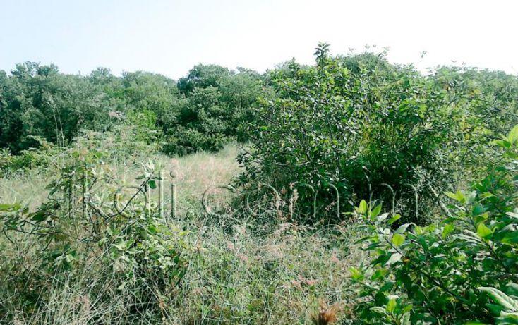 Foto de terreno habitacional en venta en camino a laguna de tampamachoco, la mata, tuxpan, veracruz, 1589312 no 01