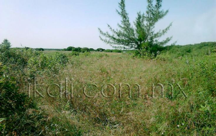 Foto de terreno habitacional en venta en camino a laguna de tampamachoco, la mata, tuxpan, veracruz, 1589312 no 02