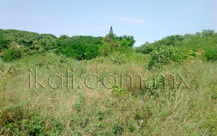 Foto de terreno habitacional en venta en camino a laguna de tampamachoco, la mata, tuxpan, veracruz, 1589312 no 04