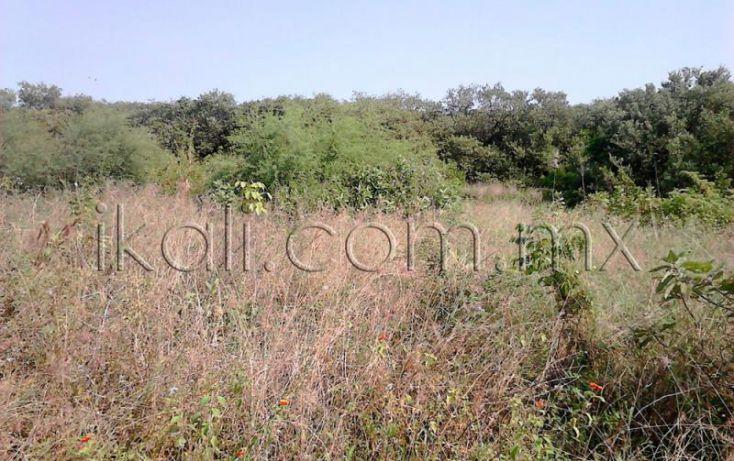 Foto de terreno habitacional en venta en camino a laguna de tampamachoco, la mata, tuxpan, veracruz, 1589312 no 05