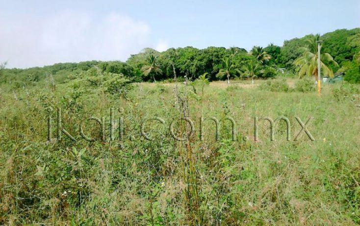 Foto de terreno habitacional en venta en camino a laguna de tampamachoco, la mata, tuxpan, veracruz, 1589312 no 06