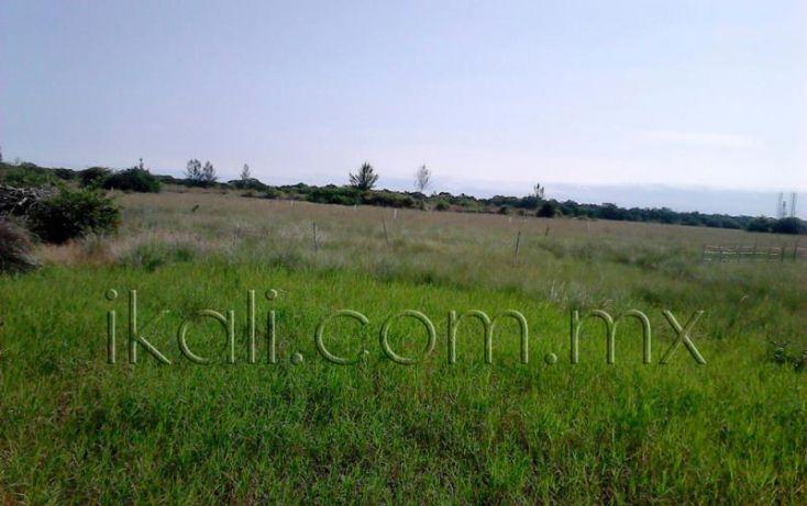 Foto de terreno habitacional en venta en camino a laguna, la mata, tuxpan, veracruz, 1571692 no 06