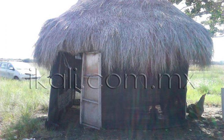 Foto de terreno habitacional en venta en camino a laguna, la mata, tuxpan, veracruz, 1571692 no 10