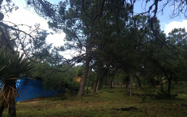 Foto de rancho en venta en camino a los lirios, los lirios, arteaga, coahuila de zaragoza, 582390 no 17