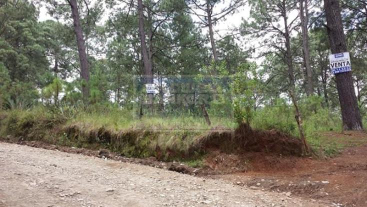 Foto de terreno habitacional en venta en  , mazamitla, mazamitla, jalisco, 1445469 No. 01