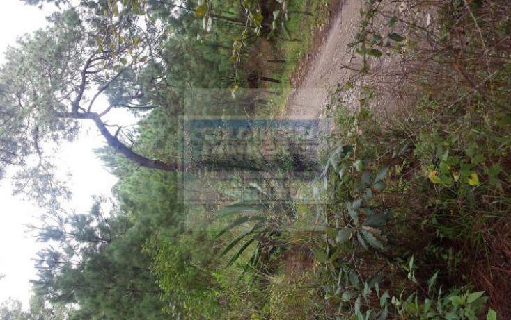 Foto de terreno habitacional en venta en camino a mazamitla dos aguas, mazamitla, mazamitla, jalisco, 1445469 no 04