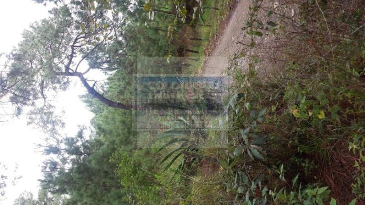 Foto de terreno habitacional en venta en  , mazamitla, mazamitla, jalisco, 1445469 No. 04