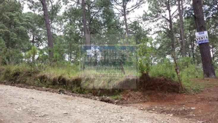Foto de terreno habitacional en venta en  , mazamitla, mazamitla, jalisco, 1445469 No. 06