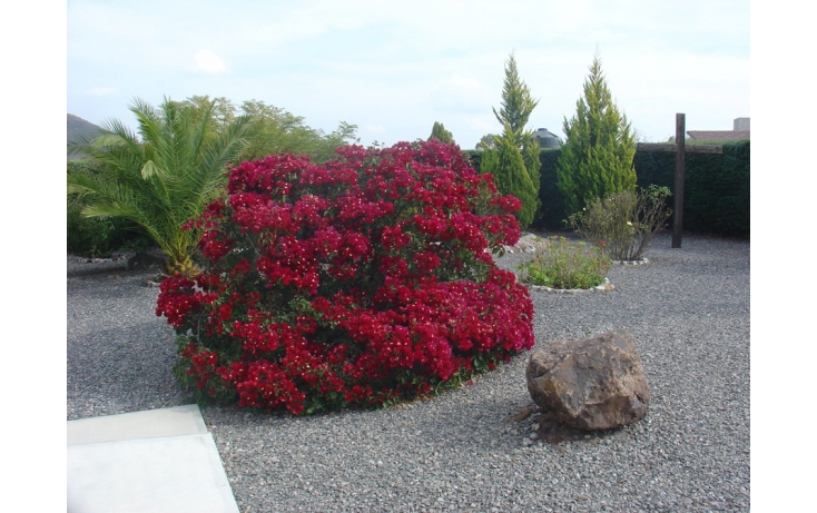 Foto de terreno habitacional en venta en camino a pie de gallo 100, santa rosa de jauregui, querétaro, querétaro, 666377 no 07