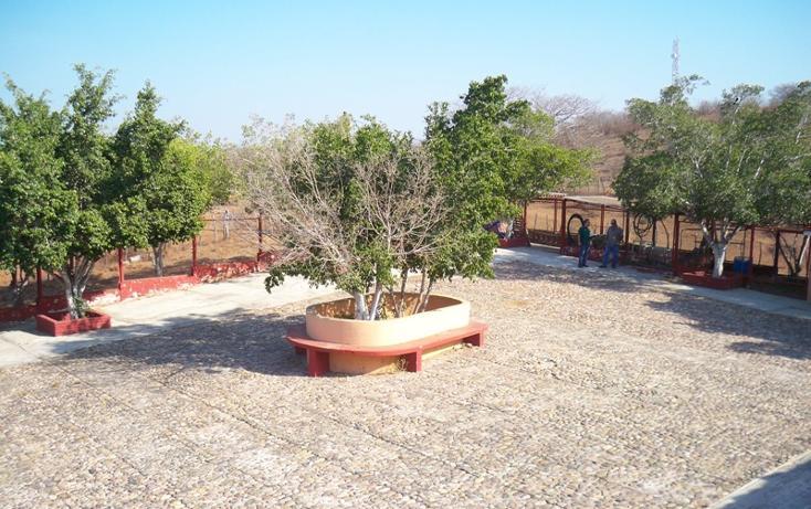 Foto de casa en venta en camino al arenal 0, el habal, mazatlán, sinaloa, 2646362 No. 04