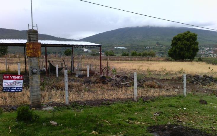 Foto de terreno industrial en venta en camino al platanal , central de abastos, zamora, michoacán de ocampo, 501253 No. 02