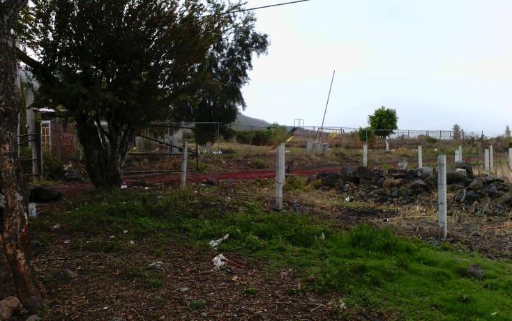Foto de terreno industrial en venta en camino al platanal , central de abastos, zamora, michoacán de ocampo, 501253 No. 05