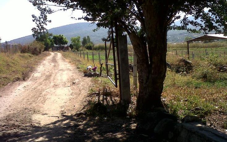 Foto de terreno industrial en venta en camino al platanal , central de abastos, zamora, michoacán de ocampo, 501253 No. 14