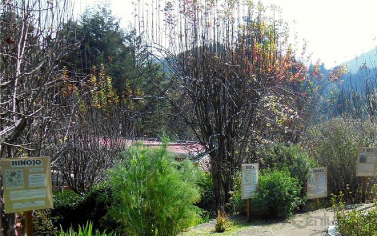 Foto de terreno habitacional en renta en camino al río, las manzanas, jilotzingo, estado de méxico, 1799784 no 11