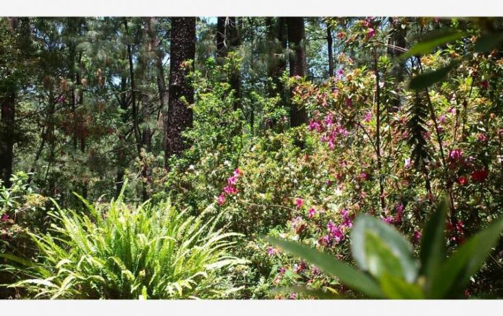 Foto de casa en venta en camino de los volcanes 16, la cofradia, mazamitla, jalisco, 855749 no 12