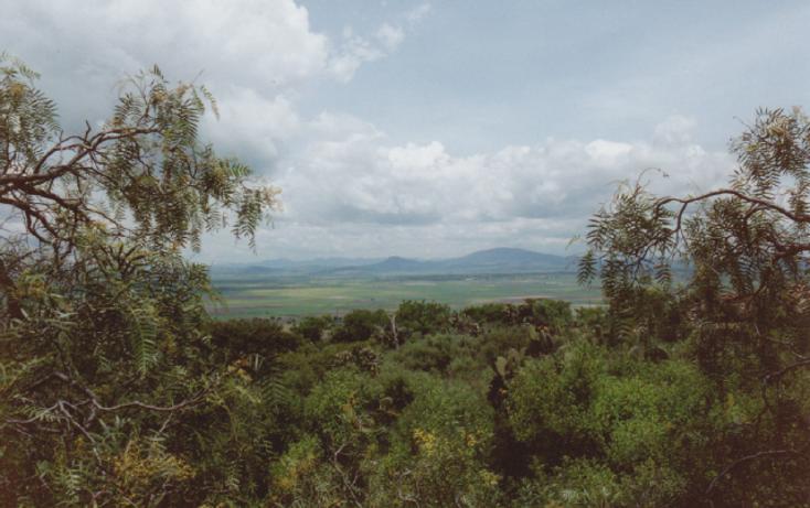 Foto de terreno habitacional en venta en camino de tolcayuca, tolcayuca centro, tolcayuca, hidalgo, 405378 no 03