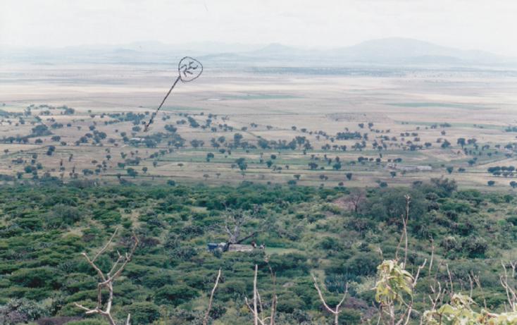 Foto de terreno habitacional en venta en camino de tolcayuca, tolcayuca centro, tolcayuca, hidalgo, 405378 no 06