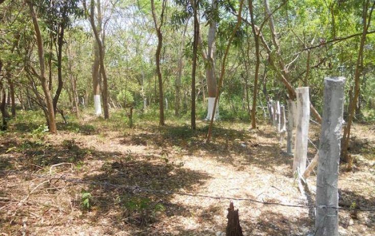 Foto de terreno habitacional en venta en camino escenica la ropa, la ropa, zihuatanejo de azueta, guerrero, 1408641 no 02