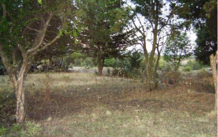 Foto de rancho en venta en camino fresnos de san agustin de berros, dolores vaquerías, villa victoria, estado de méxico, 1588204 no 06