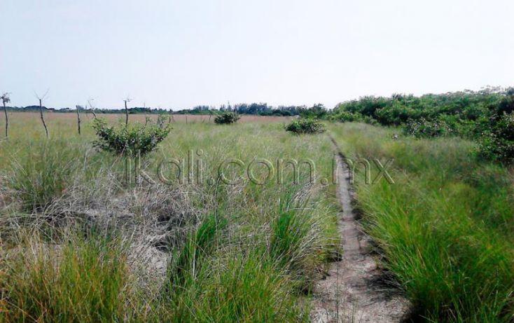 Foto de terreno habitacional en venta en camino laguna de tampamachoco, la mata, tuxpan, veracruz, 1589448 no 01