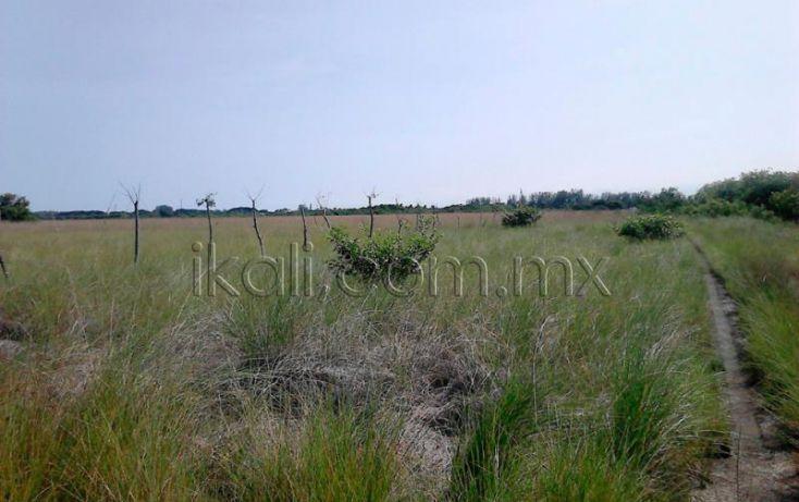 Foto de terreno habitacional en venta en camino laguna de tampamachoco, la mata, tuxpan, veracruz, 1589448 no 04