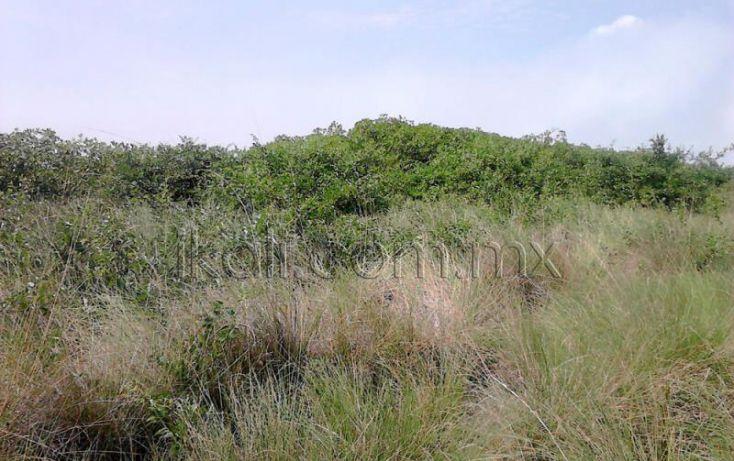 Foto de terreno habitacional en venta en camino laguna de tampamachoco, la mata, tuxpan, veracruz, 1589448 no 05
