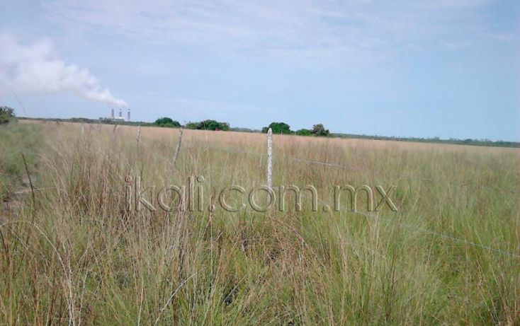Foto de terreno habitacional en venta en camino laguna de tampamachoco, la mata, tuxpan, veracruz, 1589448 no 06