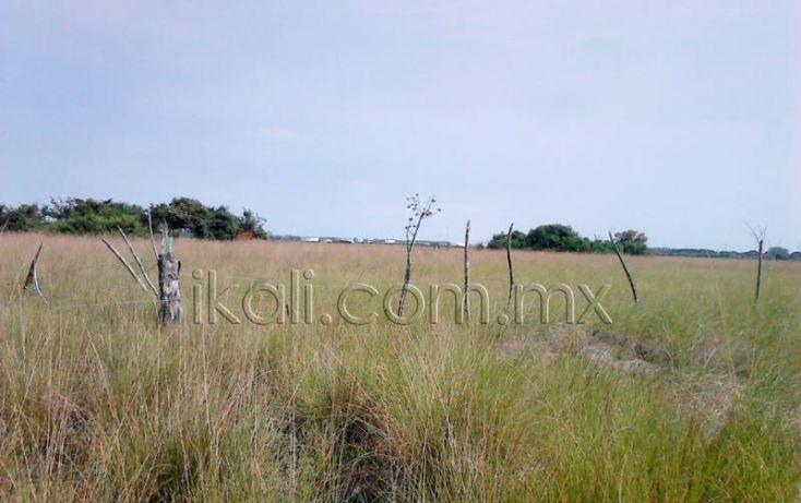 Foto de terreno habitacional en venta en camino laguna de tampamachoco, la mata, tuxpan, veracruz, 1589448 no 08