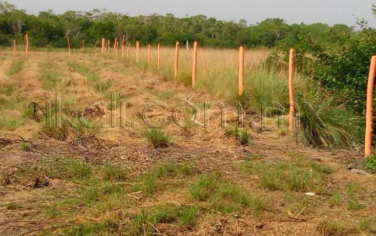 Foto de terreno habitacional en venta en camino laguna de tampamachoco, la mata, tuxpan, veracruz, 1589448 no 11