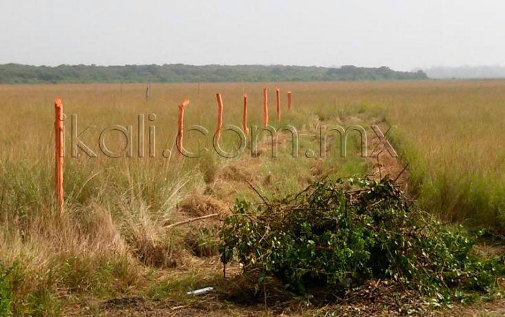 Foto de terreno habitacional en venta en camino laguna de tampamachoco, la mata, tuxpan, veracruz, 1589448 no 14