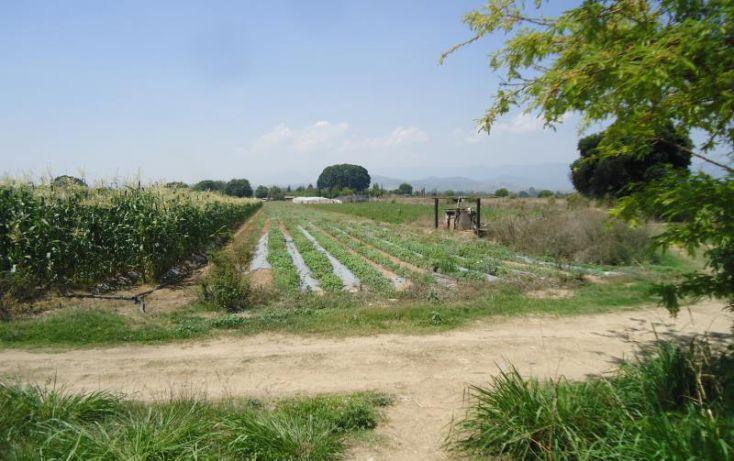 Foto de terreno habitacional en venta en camino nacional, san isidro catano, magdalena apasco, oaxaca, 1787204 no 04