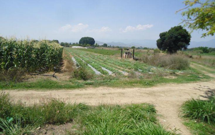Foto de terreno habitacional en venta en camino nacional, san isidro catano, magdalena apasco, oaxaca, 1787204 no 05