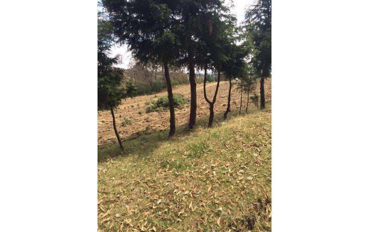 Foto de terreno habitacional en venta en  , san miguel topilejo, tlalpan, distrito federal, 1799340 No. 06