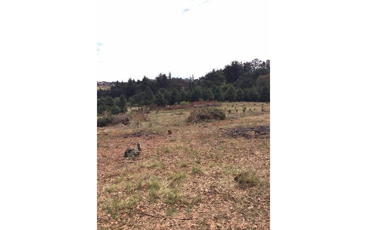 Foto de terreno habitacional en venta en  , san miguel topilejo, tlalpan, distrito federal, 1799340 No. 07