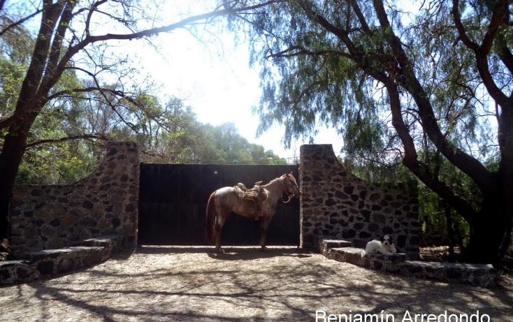 Foto de rancho en venta en camino real de tierra adentro , santiago tlautla, tepeji del río de ocampo, hidalgo, 669497 No. 33