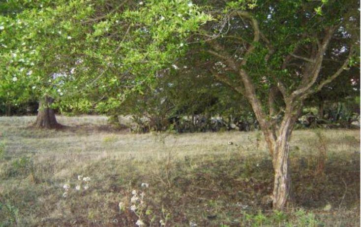 Foto de rancho en venta en camino san agustin berros, dolores vaquerías, villa victoria, estado de méxico, 1588050 no 09
