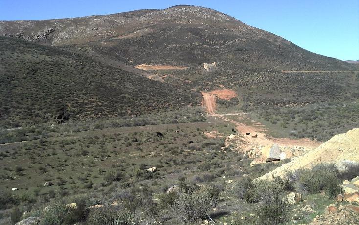 Foto de terreno habitacional en venta en  , valle de las palmas, tecate, baja california, 1774713 No. 04
