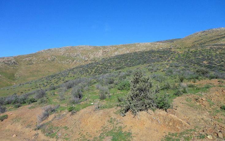 Foto de terreno habitacional en venta en  , valle de las palmas, tecate, baja california, 1774713 No. 05
