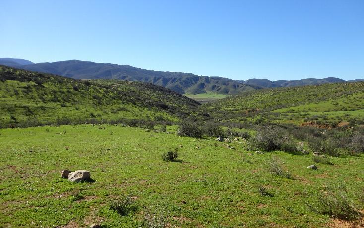 Foto de terreno habitacional en venta en  , valle de las palmas, tecate, baja california, 1774713 No. 06