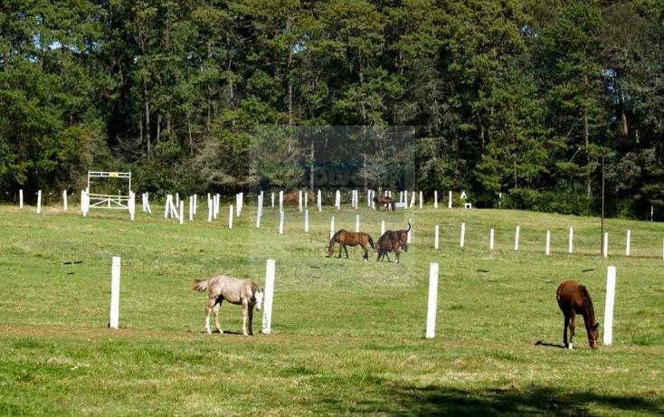 Foto de rancho en venta en camino zacacuautla a san miguel. rancho alcotlán , zacacuautla, acaxochitlán, hidalgo, 1843336 No. 12
