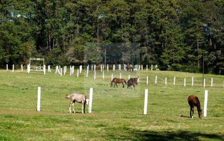 Foto de rancho en venta en camino zacacuautla a san miguel rancho alcotln, zacacuautla, acaxochitlán, hidalgo, 1398273 no 12