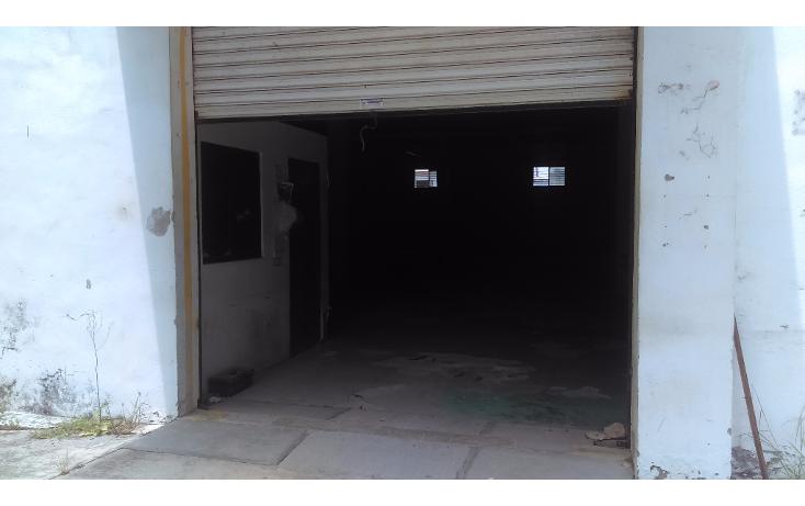 Foto de terreno comercial en renta en  , campbell, tampico, tamaulipas, 1757424 No. 08
