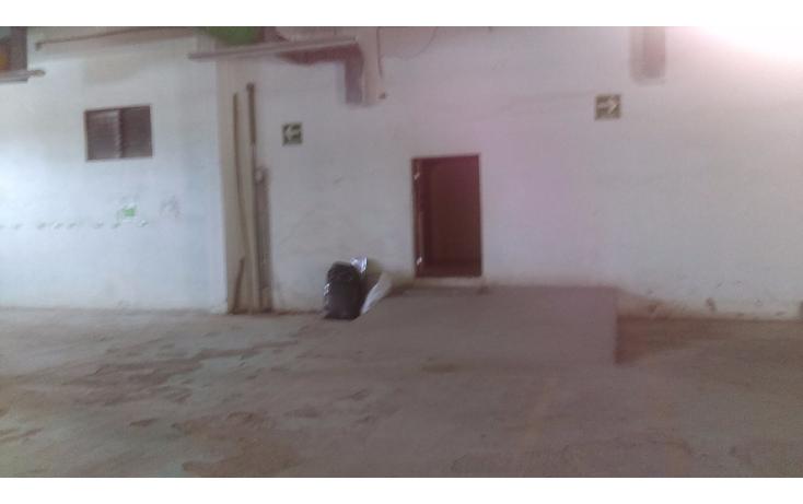 Foto de nave industrial en renta en  , campbell, tampico, tamaulipas, 1759360 No. 09