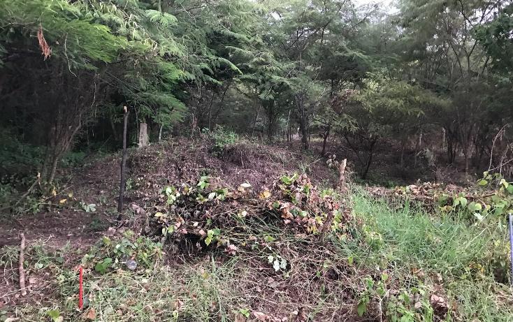 Foto de terreno habitacional en venta en, campestre arenal, tuxtla gutiérrez, chiapas, 1636224 no 02
