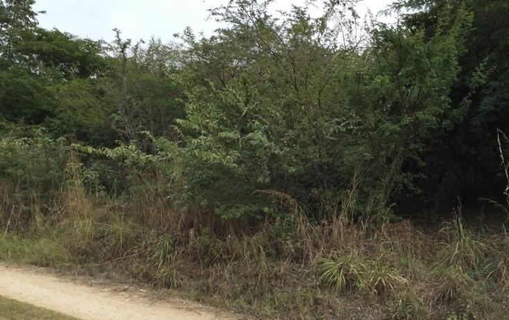 Foto de terreno habitacional en venta en  , campestre arenal, tuxtla gutiérrez, chiapas, 1636224 No. 02