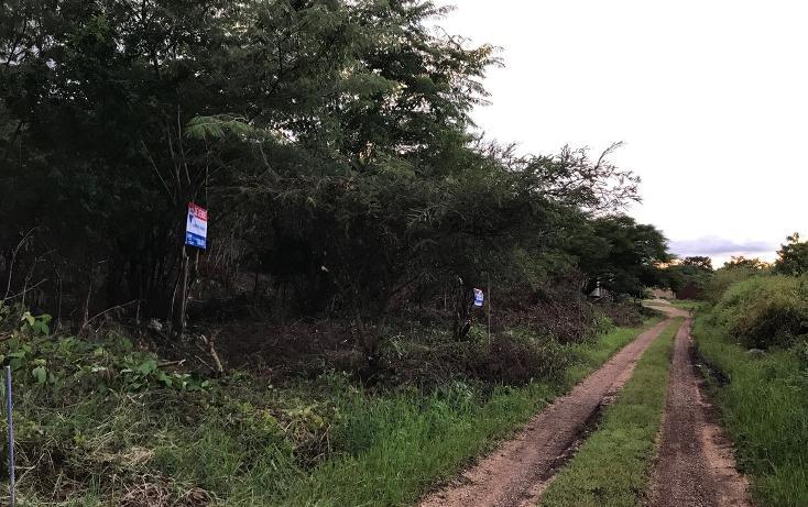 Foto de terreno habitacional en venta en, campestre arenal, tuxtla gutiérrez, chiapas, 1636224 no 04