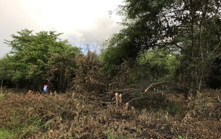 Foto de terreno habitacional en venta en, campestre arenal, tuxtla gutiérrez, chiapas, 1636224 no 05